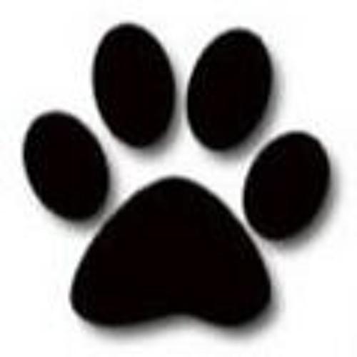 littledogdiscs's avatar