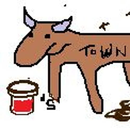 Cowtown Jamzzz's avatar