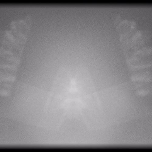 Sunrise Device's avatar