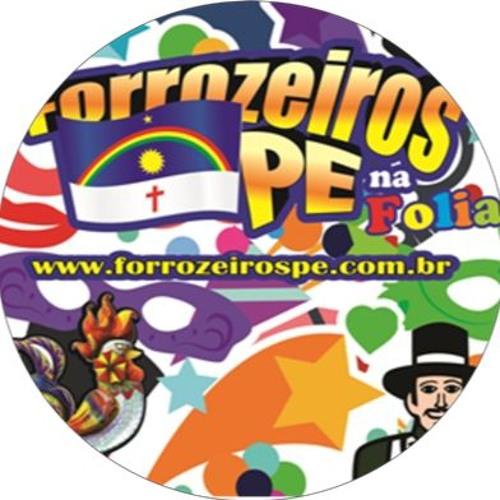 ForrozeirosPE na Folia's avatar