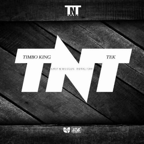 TNT [Tek N Timbo King]'s avatar