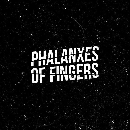 Phalanxes of fingers's avatar