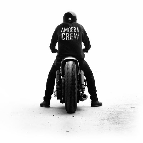 Amoebacrew's avatar