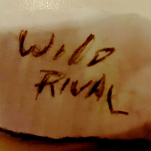 Wild Rival's avatar