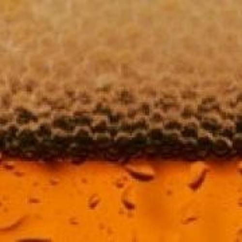 BreweriesNearMe's avatar