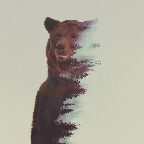 Benjamin Garcia ♪'s avatar