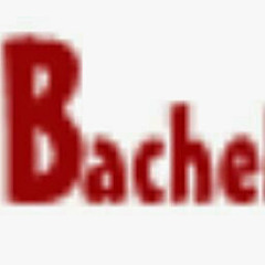 Bache Media