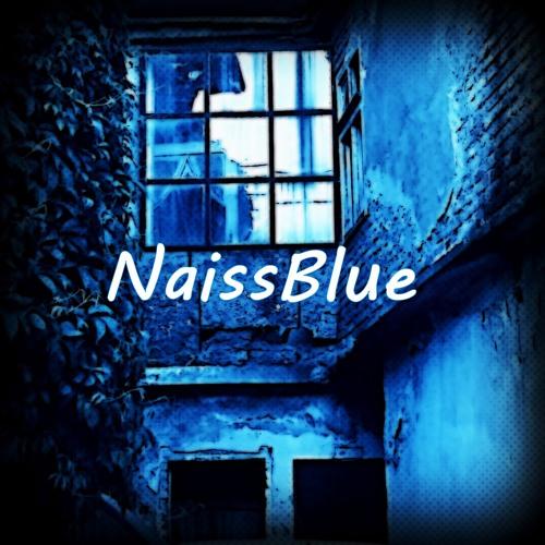 NaissBlue's avatar