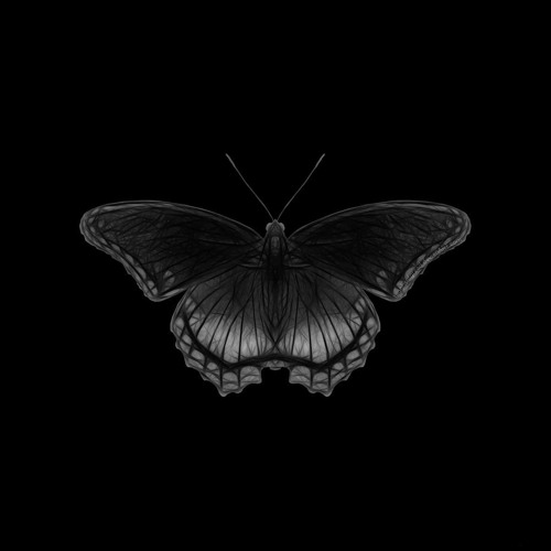 Schmetterding's avatar