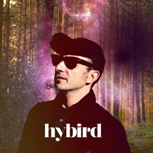 Hybird's avatar