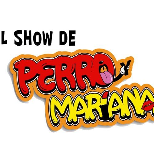 El Show de Perro y Mariana's avatar