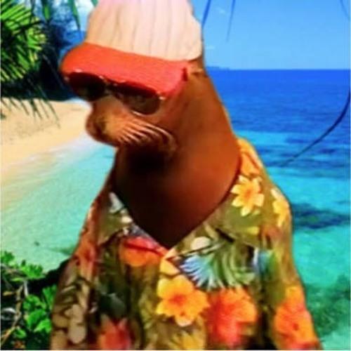 Chapa!'s avatar