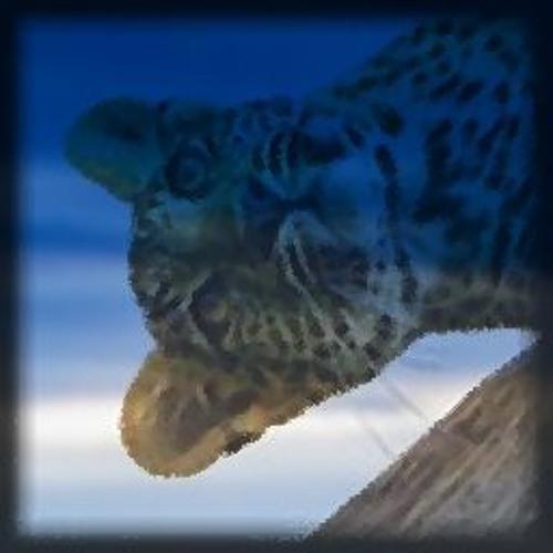 Vertigo Fox's avatar