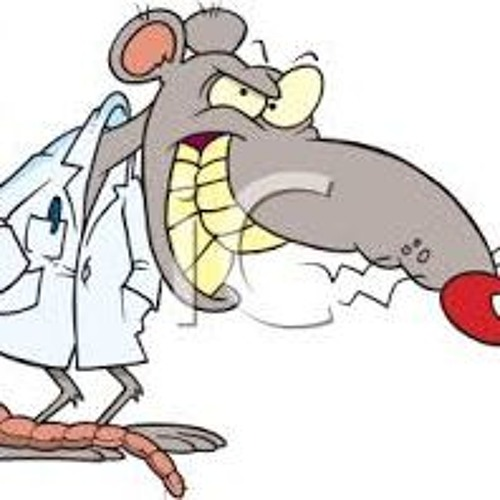 Angry Lab Rats's avatar