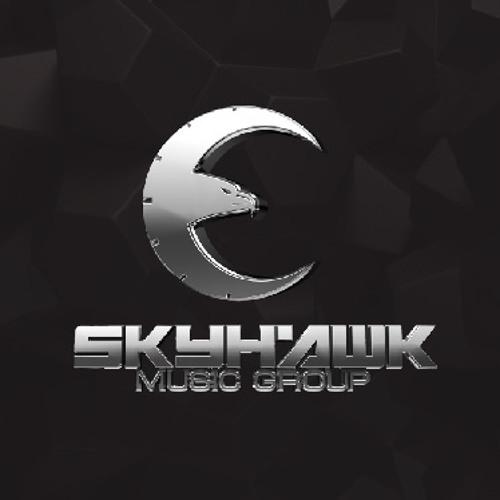 Skyhawk Music Group's avatar