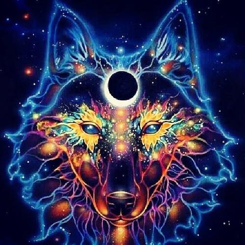 Wolf Untergrund's avatar