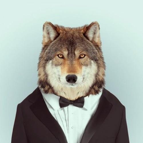 Drysilvith's avatar