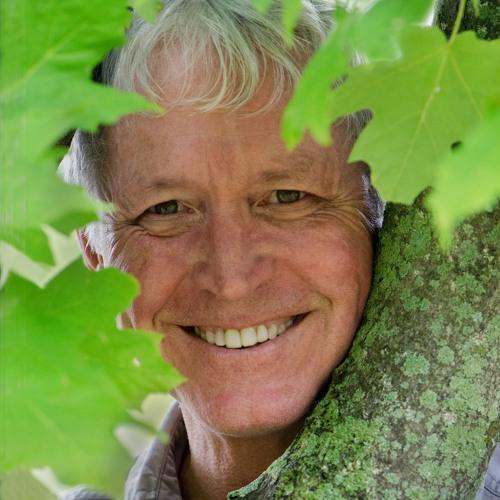 Lang Elliott – Music of Nature's avatar