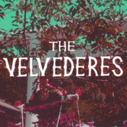 The Velvederes's avatar
