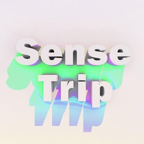 SENSE TRIP's avatar
