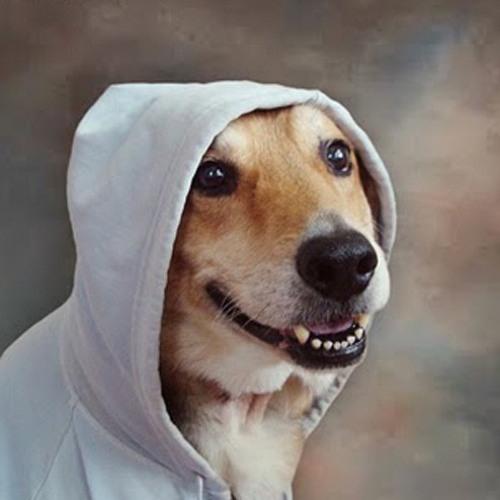 SANCHO's avatar