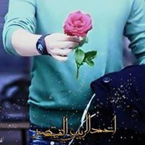 احمد الربيعي القيصر's avatar