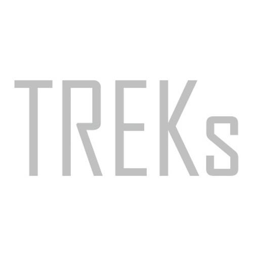 TREKs's avatar