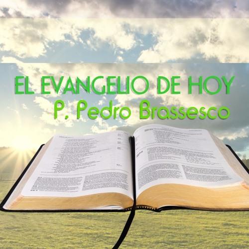 Pedro Brassesco's avatar