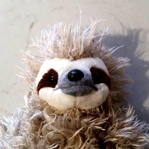 Sandy the Sloth's avatar
