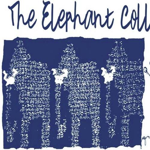 The Elephant Collective's avatar