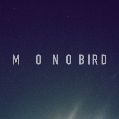 Photo de Monobird