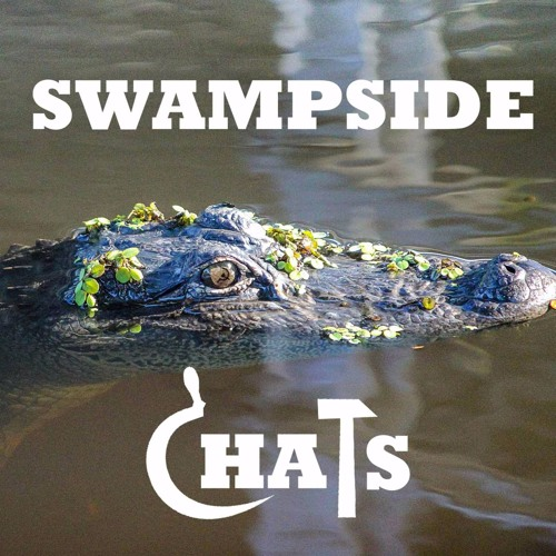 Swampside Chats's avatar