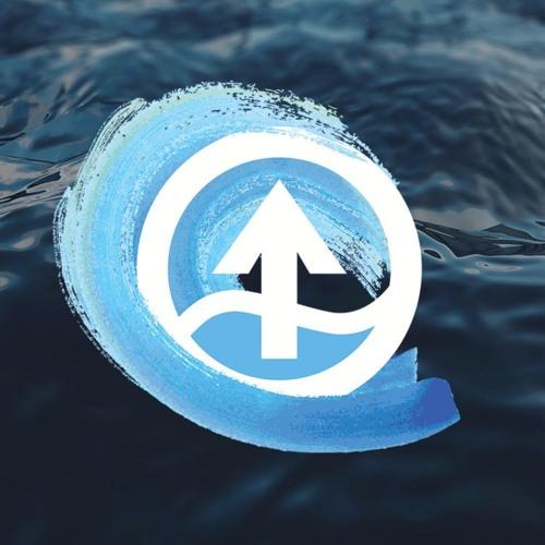 BerryFlow Upstream's avatar