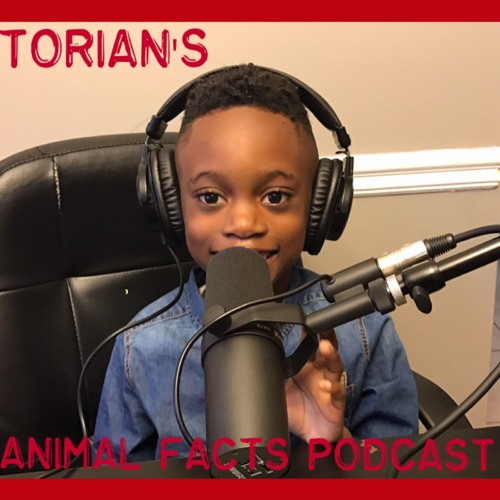 Torian's Animal Facts's avatar