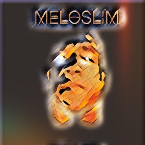 MeloSlim's avatar