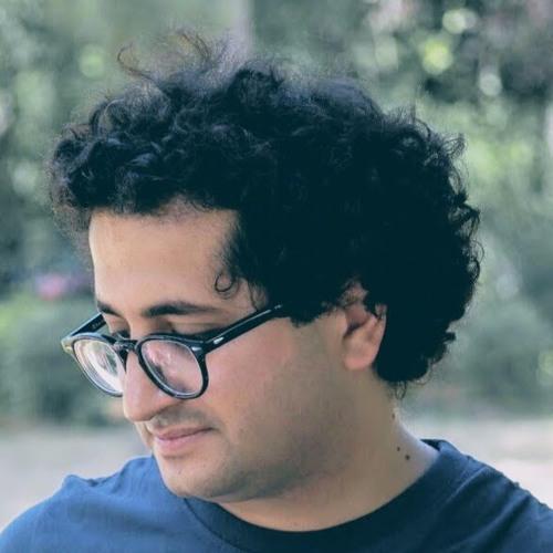 Sina Fallahzadeh's avatar