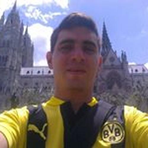 Tulio D Figueroa Zambrano's avatar