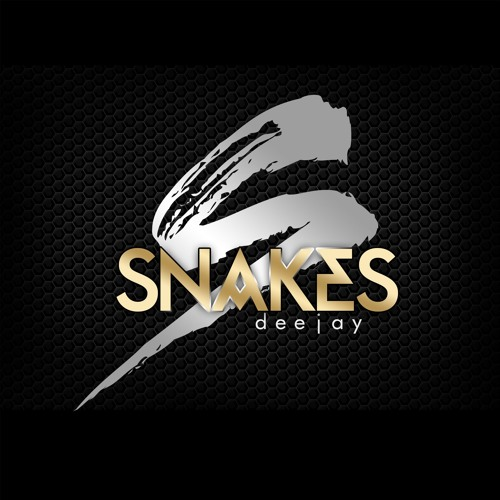 Dj Snakes - Secret Team's avatar