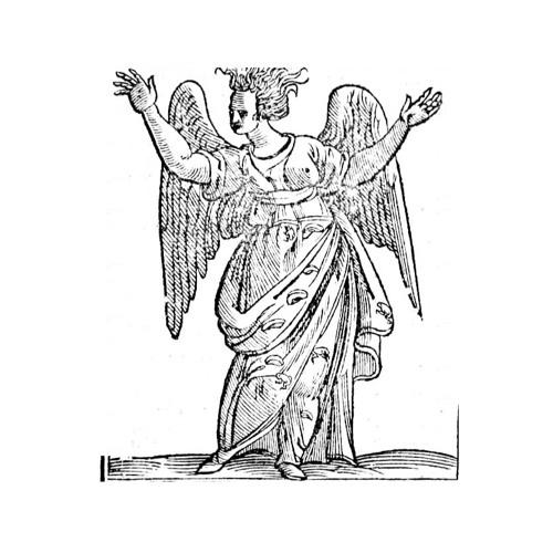 Cvriosita's avatar