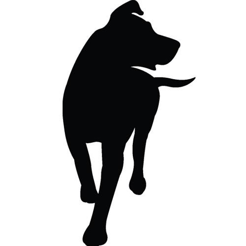 kaninerecords's avatar