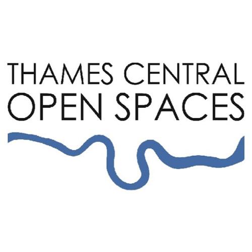 Thames Central London's avatar