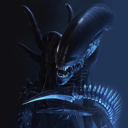 Estewes's avatar
