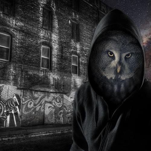 Jayyef the Night Owl's avatar