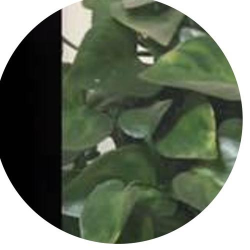 ☕'s avatar