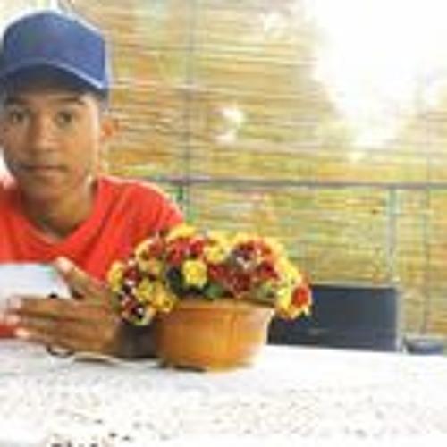 Rio Dalmazio's avatar