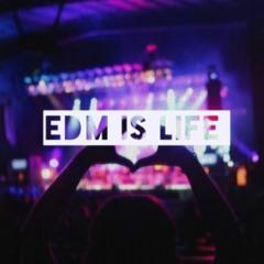EDM Is Life