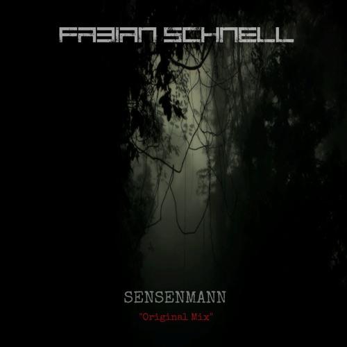 Fabian Schnell's avatar