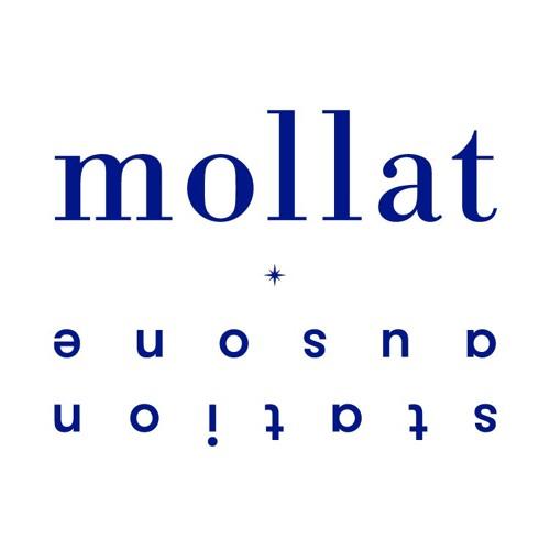 librairie mollat's avatar