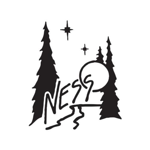 Ness Creek Music Festival's avatar