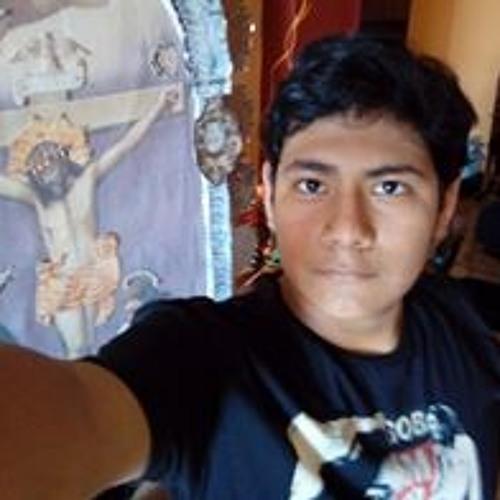 Renato Martin Navarro's avatar